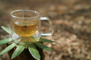 Olive Tea – From The Lands Of Sands